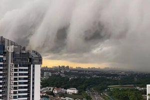 Đám mây 'ma quái' như sóng thần phủ kín bầu trời khiến cư dân mạng Singapore hoảng hốt