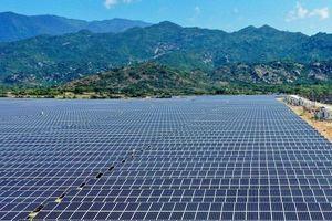 Doanh nghiệp 2 tháng tuổi muốn làm 2 dự án điện mặt trời 1.700ha ở Đắk Lắk