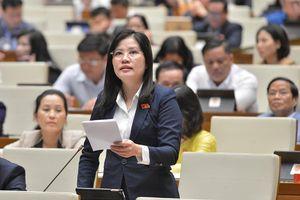 Đại biểu Quốc hội đề nghị lưu ý đầu tư công cho các hoạt động bảo vệ môi trường