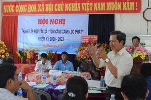 Kiên Giang: Thành lập hợp tác xã chuyên nuôi tôm càng xanh