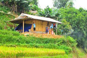 Huyện Mù Cang Chải (Yên Bái): Thay đổi tập quán canh tác