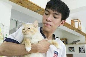 Chuyện về chàng trai trẻ chuyên 'giải cứu' các chú mèo