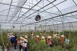 UBND tỉnh An Giang công nhận điểm du lịch Nông trại Phan Nam