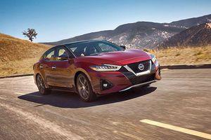 Nissan Maxima 2021 tới 1 tỷ đồng, 'đấu' Toyota Avalon thế hệ mới
