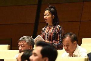 Bộ trưởng Trần Hồng Hà: 'Mất rừng không có nghĩa là cứ nghĩ đến thủy điện'