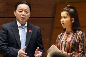 Chất vấn tại Quốc hội: Gay gắt về thủy điện và chất lượng rừng