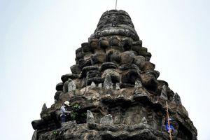 'Ninja' làm vườn tại đền Angkor Wat