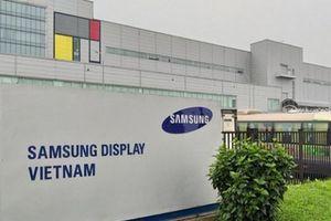 Khủng hoảng kép, Samsung Display Việt Nam báo lỗ 2.700 tỷ đồng trong quý II/2020