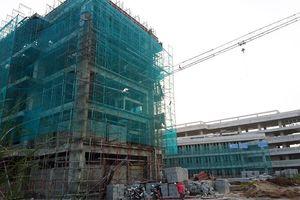 Thành phố Cần Thơ: Đầu tư sản xuất kinh doanh vật liệu xây không nung còn nhiều dư địa