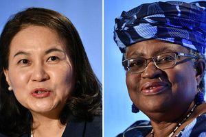 WTO trì hoãn quyết định về tân Tổng Giám đốc