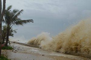 Chủ động ứng phó ATNĐ có thể mạnh lên thành bão