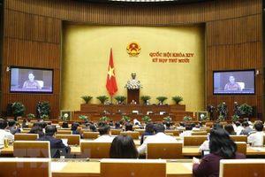 Ba Phó Thủ tướng và các tư lệnh ngành trả lời chất vấn trước Quốc hội
