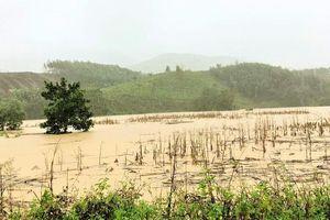 Đắk Lắk, Lâm Đồng: Lên phương án đưa dân khỏi vùng nguy cơ lở đất, lũ quét