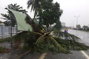 Diễn biến bão số 12 tại Khánh Hòa: Ngập cục bộ, mất điện tại nhiều xã