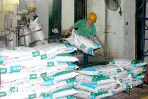 Chi hơn 803 triệu USD nhập khẩu thức ăn chăn nuôi