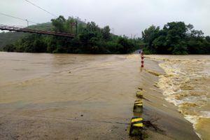Khánh Vĩnh thiệt hại khoảng 62ha cây trồng
