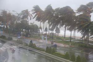 Bão số 12 suy yếu thành áp thấp nhiệt đới