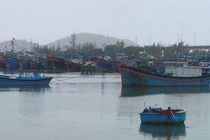 Ninh Thuận: Di dời hàng nghìn người dân đến nơi an toàn để phòng tránh bão số 12