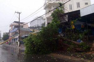 Bão số 12 gây mất điện tại nhiều xã ở Phú Yên