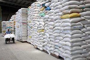 Viện Tầm nhìn châu Á đề xuất thành lập Hiệp hội lúa gạo ACMECS
