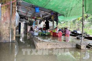Quảng Nam dự trữ lương thực, thực phẩm cho người dân ứng phó bão số 13