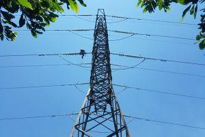 Vĩnh Long hỗ trợ ngành điện vay vốn lãi suất thấp