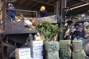 Tiêu hủy 6,7 tấn thuốc trừ cỏ không có trong danh mục thuốc bảo vệ thực vật