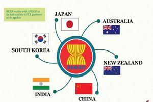 Hiệp định RCEP cơ hội lớn cho ngành nông sản Việt Nam bay cao tại thị trường nội khối ASEAN