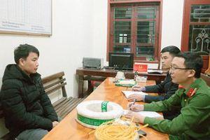 Phê chuẩn khởi tố đối tượng cắt khóa, đột nhập trộm cắp tài sản tại thị trấn Phố Châu