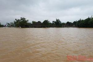 Việt Nam đề xuất bỏ tên bão Linfa để chia sẻ mất mát với người dân miền trung