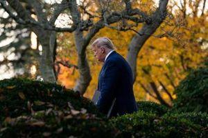 Tổng thống Trump 'thừa nhận ông Biden thắng cử' nhưng...