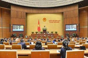 Thành phố Hồ Chí Minh sẽ không còn Hội đồng nhân dân quận từ ngày 1-7-2021