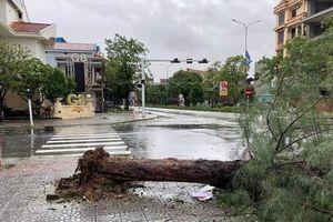 Quảng Bình: Bão Vamco đánh chìm tàu cá, sập nhiều nhà dân