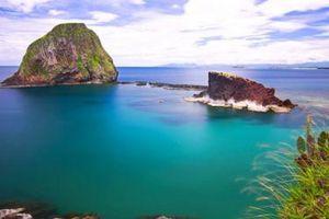 Phú Yên: Bảo tồn quần thể rạn san hô Hòn Yến