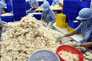 Đấu giá 49,89% vốn tại Sa Giang: SCIC kiên trì bán trọn lô cổ phần