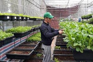 Nghệ An chi 117 tỷ đồng cho Chương trình khuyến nông giai đoạn 2021 - 2025