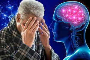 Hiểu đúng về chứng sa sút trí tuệ ở người cao tuổi
