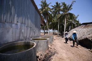 Biến đổi khí hậu gây thiệt hại hơn 2.500 tỷ tại Việt Nam