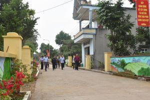 Chấm thi tuyến đường thôn kiểu mẫu tiêu biểu cấp tỉnh tại Móng Cái, Hải Hà