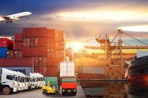 Tác động của môi trường ERP đến việc tổ chức hệ thống thông tin kế toán tại các doanh nghiệp logistics TP. Hồ Chí Minh