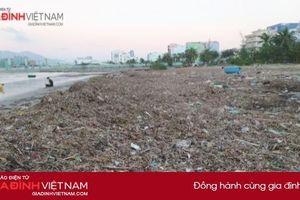 Biển Đà Nẵng tan hoang, bị lấp kín bởi 3.000 tấn rác thải
