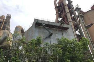 Từ chối đề xuất chuyển diện tích rừng làm nhà máy xi măng, đường giao thông