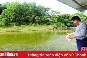 Phát triển nghề nuôi trồng thủy sản ở huyện Bá Thước