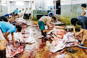 Khu giết mổ gia súc, gia cầm tập trung: Cần sớm triển khai
