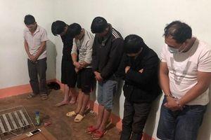 Truy tố nhóm đối tượng trộm chó ở Đắk Nông
