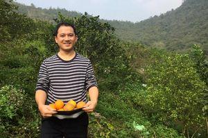 Ứng dụng FoodHub: Đưa nông sản sạch từ nông trại đến bàn ăn