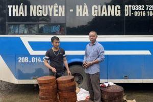 Hà Giang: Phát hiện xe khách vận chuyển 31 khúc gỗ nghiến lậu
