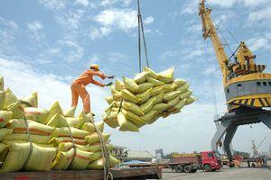 Việt Nam là hình mẫu hiếm hoi về duy trì ổn định nền kinh tế trong thời COVID-19