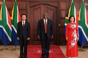 Nỗ lực tăng cường 'đối tác vì hợp tác và phát triển' Việt Nam - Nam Phi