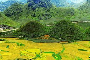 3 lý do nhất định phải ghé thăm Hà Giang tháng 11 này